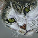 Tara - White and Tabby Cat Painting by Michelle Wrighton