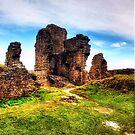 Castle Ruins by Vicki Field