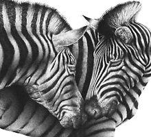 Zebras by Lorna Mulligan