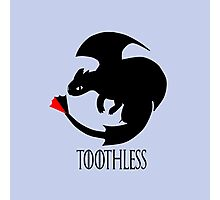 Toothless / Game of Thrones Photographic Print