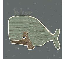 blue whale Photographic Print