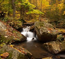 Autumn at Pearson Falls by Kelvin  Taylor