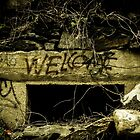 We've Been Expecting You by Claudia Heidelberger