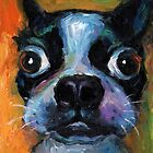 Cute Boston Terrier puppy dog portrait by Svetlana Novikova by Svetlana  Novikova