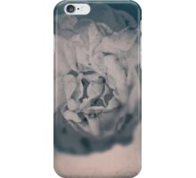 In The Evening Time iPhone Case/Skin