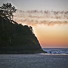 salmon sunset by Bruce  Dickson