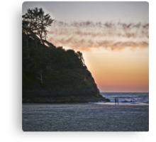 salmon sunset Canvas Print