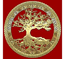 Celtic Tree of Life, Yggdrasil  [Gold] Photographic Print