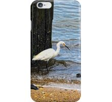 Snowy Egret At The Shore iPhone Case/Skin