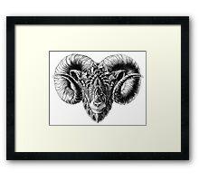 Ram Head Framed Print
