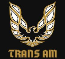 trans am by swoodwar41