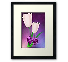 2 Pink Tulips (6994 Views) Framed Print