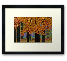 Top selling . Views: 16249  ♥ ♥ ♥ ♥ series . Forever Autumn   . Eye-catcher - For Sure ! Fav: 76.  Thx friends ! muchas gracias !!! This image Has Been S O L D . Buy what you like!  Framed Print