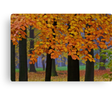 Top selling . Views: 16249  ♥ ♥ ♥ ♥ series . Forever Autumn   . Eye-catcher - For Sure ! Fav: 76.  Thx friends ! muchas gracias !!! This image Has Been S O L D . Buy what you like!  Canvas Print