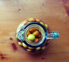 Rural citrus by possumhollow