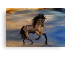 Cosmic .. Wild Stallion Canvas Print