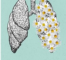 Lungs by aconits