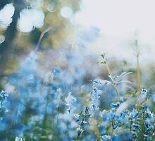 Flower meadow by Indea Vanmerllin