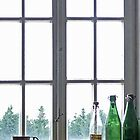 Vintage Bottles on Window Sill by Bine
