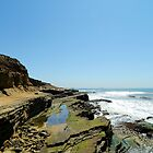 Pacific Coast by debidabble