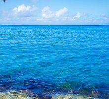 Beautiful Sea landscape by ellensmile