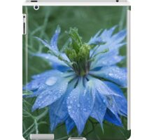 Love in a Mist (dedicated to Lynn Carter) iPad Case/Skin