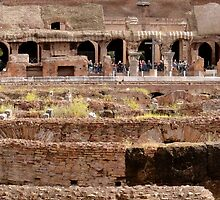 More from the Colosseum  by Cristy Hernandez