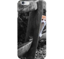 Cat on a fence iPhone Case/Skin