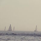 Sail Boats on Lake Ontario by mlleruta