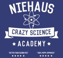 Niehaus Academy by geekmonkey