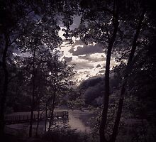 Light breaking through the clouds at Worsley woods  by Michaelocm3