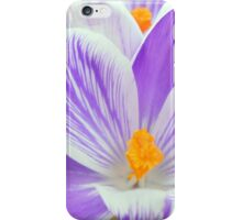 crocus abstract iPhone Case/Skin