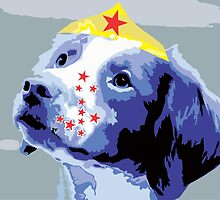 Wunderhund - Brittany Spaniel #2 by DougPop