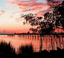 SUNRISE ON THE INDIAN RIVER by TomBaumker