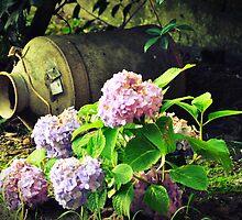 Flowers Pot A Lait by PhotoGumbo