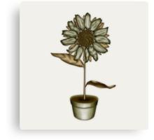 Flower & Pot IV Canvas Print