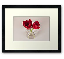 Red tulip still life Framed Print