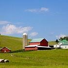 Perfect Farm by njordphoto