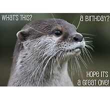 Otter birthday card Photographic Print