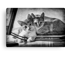 A couple of tots Canvas Print