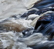 White Water at Ragged Falls, Algonquin Park, ON, Canada by Gerda Grice