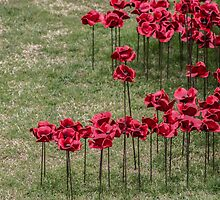 We Will Remember by liberthine01