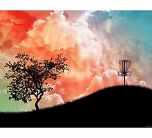 Basket On A Hill Photographic Print