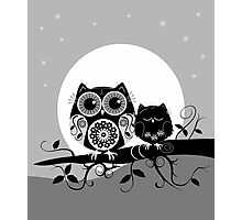 Flower power Owl with sleepy Baby & full Moon Photographic Print