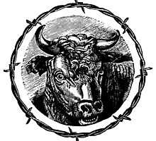 Vintage Cattle Head in Barb Wire frame - Woodcut by cartoon