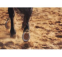 In the Sand Photographic Print