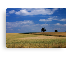 Wheat Field - JUSTART ©  Canvas Print