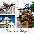 Wangen im Allgaeu by ©The Creative  Minds