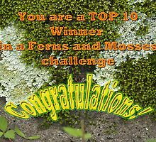 Banner Ferns And Mosses TOP 10 by MotherNature