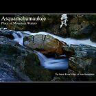 Asquamchumaukee Poster by Wayne King